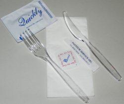 Bis monouso con forchetta e coltello trasparenti, tovagliolo 2 veli, sale, stuzzicadenti e salviettina profumata